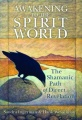 Awakening to the Spirit World: The Shamanic Path of Direct Revelation by Sandra Ingerman & Hank Wesselman