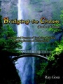 Bridging the Chasm (Teacher's Edition): An Integrated Program of Vocabulary Building, Reading Fluency, & Writing Skills by Ray Gosa