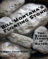 Floating Stone by Bill Montana