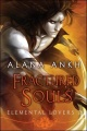 Fractured Souls by Alana Ankh