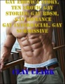 Gay Erotica Story, Ten Erotic Gay Stories: Gay Bdsm, Gay Romance, Gay Interracial, Gay Submissive