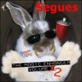 Magic Enhancer 2: Segues by Robert Haas