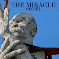 The Miracle Model by Jason Messina