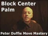 Block Center Palm