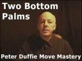 Two Bottom Palms by Peter Duffie