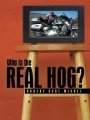 Who is the Real Hog? by Robert Scot Michel