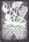 The Book of Light by Tom Phoenix