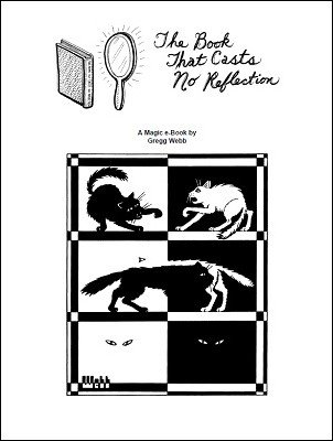 The Book That Casts No Reflection by Gregg Webb