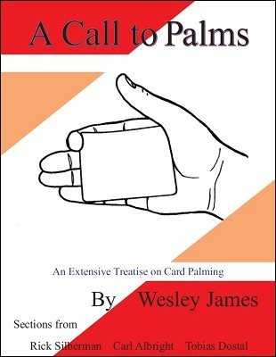 A Call To Palms by Wesley James