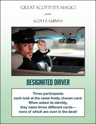 Designated Driver by Scott F. Guinn