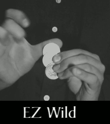 EZ Wild by MS
