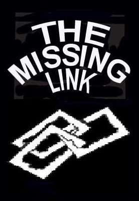 The Missing Link by Stephen Tucker