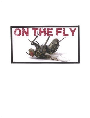 On the Fly by Brick Tilley